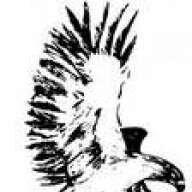 falcon125