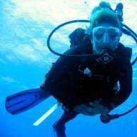 sea horse diver