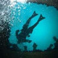 Blue Roamer