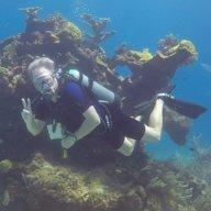 DiveEngineer