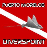 Diverspoint