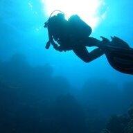divingbarberwv