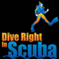 Dive Right In Scuba