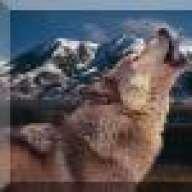 Da Wolf