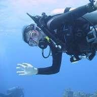 RedFishBlueFish